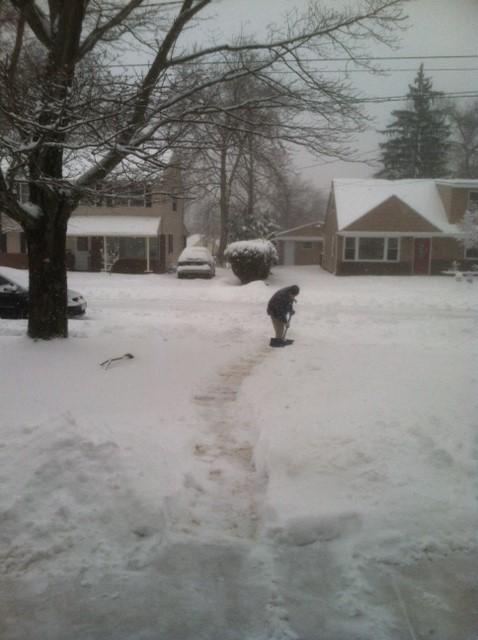 Snow @015